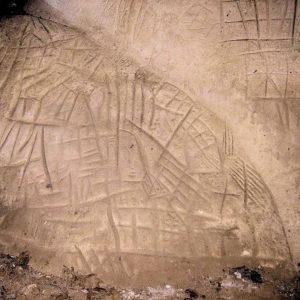 Traces préhistoriques dans la foret de Fontainebleau - Sarah Merlino pour Horizon Durable